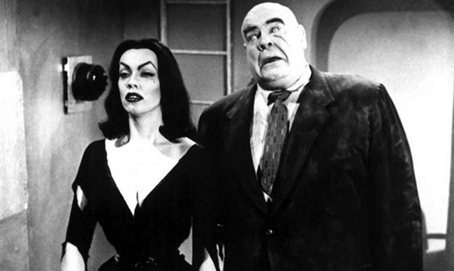 Harbour Highlights: Plan 9 From Outer Space
